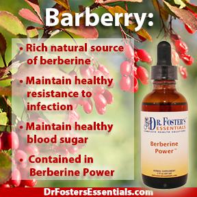 Berberine Power Immune System Weight And Blood Sugar